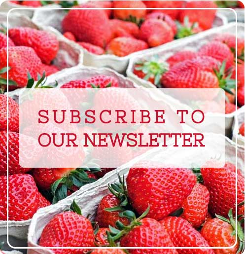 Digestive Nutrition Clinic Newsletter